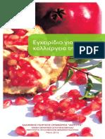 RODIA 17x28.pdf