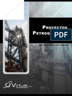 proyPetr_Calle.pdf