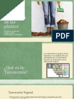 Crystal_Taxonomía de Las Plantas