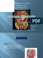 incisiones-abdominales