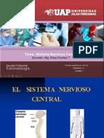 3 Unidad i 3 Sistema Nervioso Central