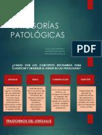 4. CATEGORÍAS PATOLÓGICAS