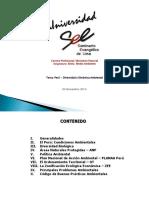001 Perú - Diversidad y Dinámica Ambiental