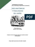 Bases anatómicas y fisiológicas del sueño