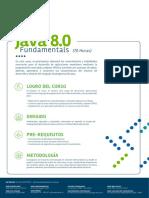 java-8-0-fundamental-developer.pdf