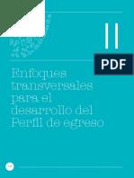 Curriculo Nacional 2017 20
