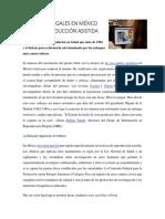 LOS VACÍOS LEGALES EN MÉXICO
