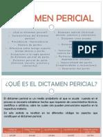 DICTAMEN PERICIAL (2)