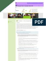 Metas de Aprendizagem 3 - Educacao Visual- 2 Outubro 2010