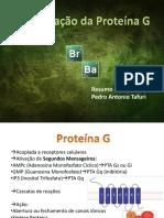 Vias_de_ao_da_Protena_G.pdf