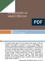 Avaliação Neuropsicológica Infantil - Luciana Tisser