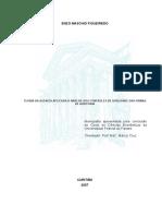 Monografia Ciencias Economicas 2007 - Enzo Maschio
