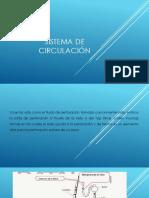 Sistema de Circulacion D.coragua.A Defensa