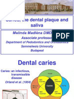 Caries the Dental Plaque and Saliva