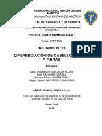Informe n 23 Cabello (1)
