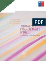 Orientaciones Diversidad Sexual y de Genero LGBTI.pdf