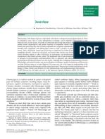 clauw2009.pdf