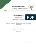 Practica 1 Patologia Clinica