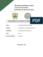 2do Informe de Meca - Del Aguila Soto
