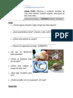 Guía de apoyo.Ciencias Naturales.1º Básico.Mayo.docx