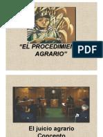 ProcedimientoAgrario.pdf