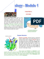 Ch 4 - Enzymes
