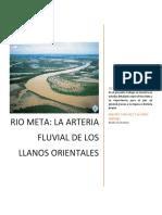 Rio Meta - La Arteria Fluvial de Los Llanos Orientales