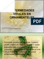 VIRUS EN ORNAMENTELES.ppt