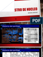 # 4-Registro de Nucleo Daniela