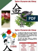 agua metal fisiologia y fisiopatologia (1).pptx