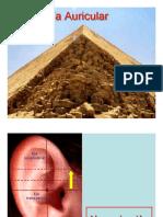 Agua Metal Fisiologia y Fisiopatologia (1)