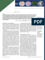IgA nep.pdf