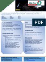 DASHINSPECTORATE  BRO API 570.pdf
