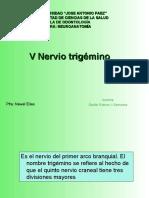 V Nervio trigémino