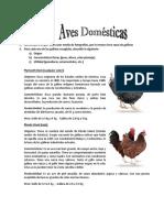 Especialidad Aves Domesticas