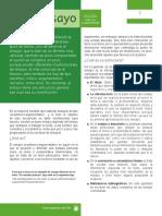 Ensayo argumentativo 2018.pdf