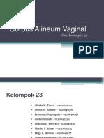 Corpus Alineum Vaginal.23
