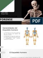 OSTEOLOGIA.pptx
