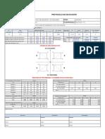 Protocolo de excv. T06 ok (1).pdf