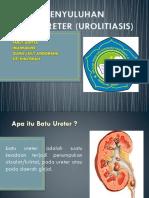 Penyuluhan Ureter