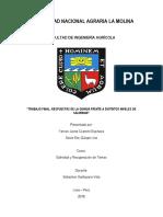 Informe de Macetas_acelga