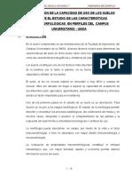 115822203-informe-perfil-del-suelo.doc