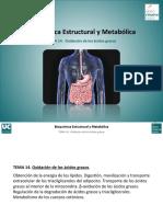 Tema-14.-Oxidacion-de-acidos-grasos.pdf