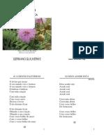 Germano Guilherme - Sois Baliza - Folha Usada.pdf