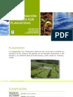 contaminacindesuelosporplaguicidas-140811000332-phpapp02.pdf