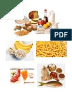 Proteina Carbohidrato y Lipidos