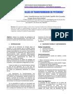 Deteccion-de-Fallas-en-Trafo-15kv.pdf