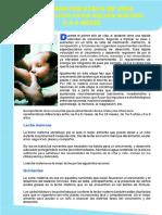 ALIMENTACION-0A6MESES.pdf
