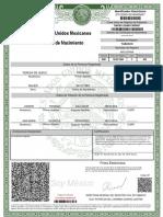 Acta de Nacimiento TIMT831224MTCRRR07