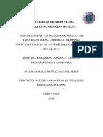 ESTUDIO DE LAS VARIANTES ANATOMICAS DEL CIRCULO ARTERIAL CEREBRAL  MEDIANTE  ANGIOTOMOGRAFIA EN UN HOSPITAL DE PERU ENTRE 2015 AL 2017